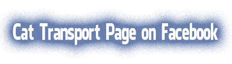 Cattransport page on Facebook
